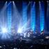 DOJIMA SPRING LIVE 2017